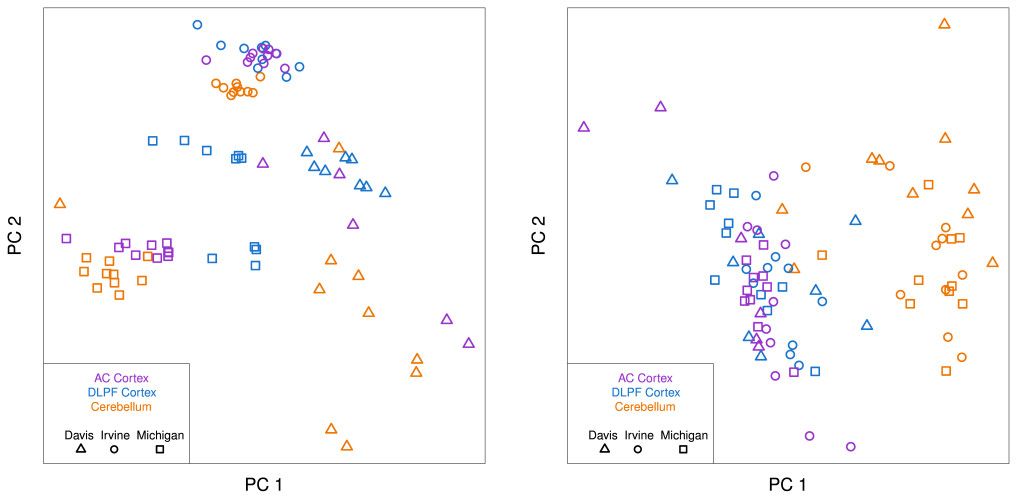 Microarray data from tissue samples taken from three different regions of the brain (anterior cingulate cortex, dorsolateral prefrontal cortex, and cerebellum) of ten individuals. The 30 tissue samples were separately analyzed in three different laboratories (UC Davis, UC Irvine, U of Michigan). The left plot shows the first two principal components of the data. The data cluster by laboratory, indicating that most of the variation in the data is systematic error that arises due to uncontrolled variation in laboratory conditions. The second plot shows the data after adjustment. The data now cluster by brain region (cortex vs. cerebellum). The data is from GEO (GSE2164).